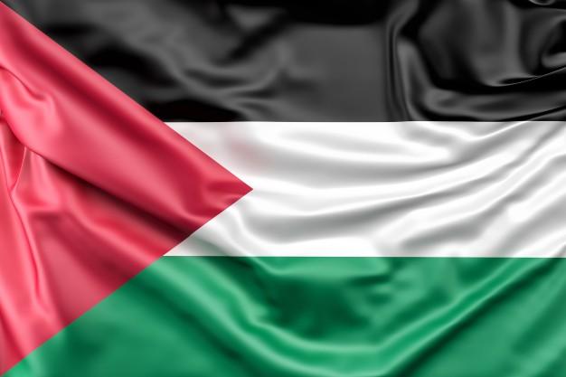 bandera-de-palestina_1401-194